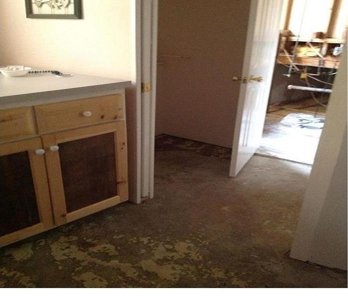 Mold Discovered in Smithtown home. After