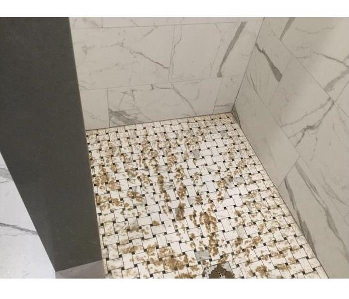 Shower floor with sewage on tile
