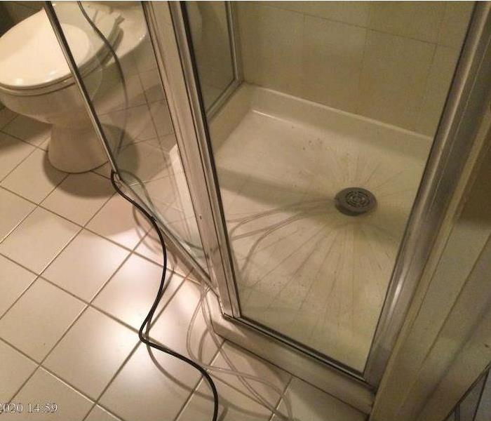Shower with drain hose beside toilet