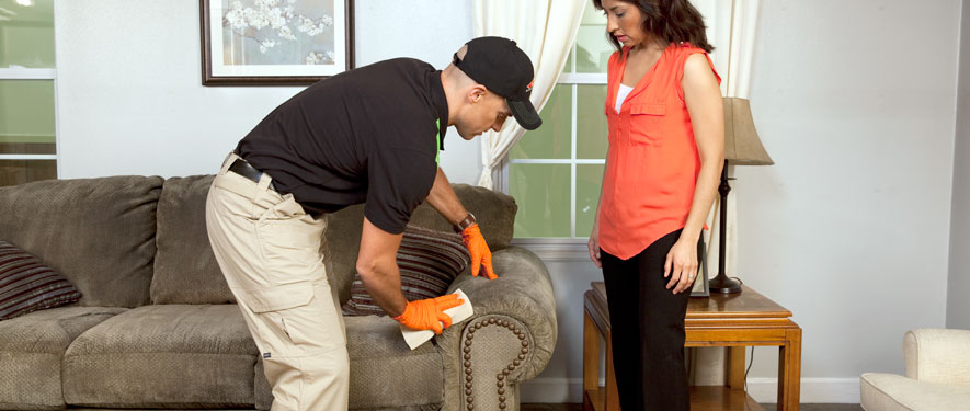 Smithtown, NY carpet upholstery cleaning