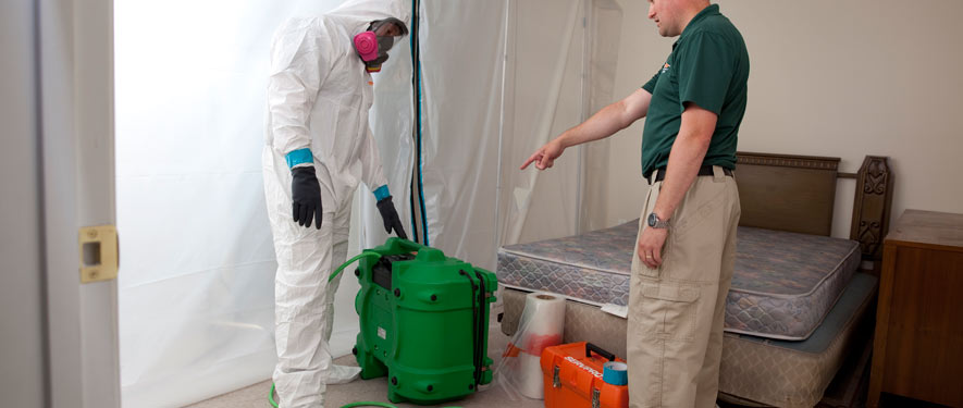 Smithtown, NY mold removal process